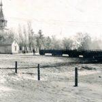 Siaurukas Zarasų rajone